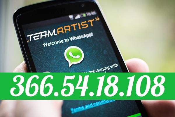 TeamArtist WhatsApp: i 3 passaggi per avere il nostro numero di Telefono!